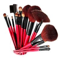 SHANY Professional 12 - Piece Cosmetic Brush Set with Pouch - RED