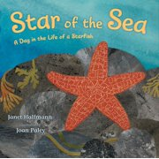 Star of the Sea : A Day in the Life of a Starfish