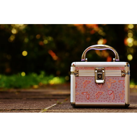 Pink Vanity Cases Briefcase Cute Luggage Silver-11 Inch By 17 Inch Laminated Poster With Bright Colors And Vivid Imagery-Fits Perfectly In Many Attractive Frames