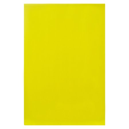 New 338623  Poster Foam Neon Yellow 20 X 30 Bazic (25-Pack) Paper Cheap Wholesale Discount Bulk Stationery Paper Bud Vase - Cheap Stationery