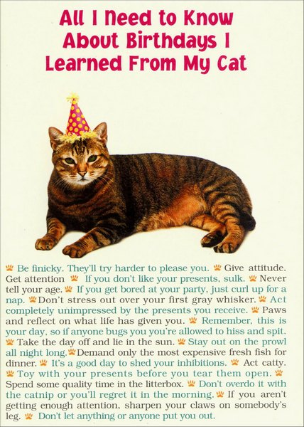 Portal Publications All I Need From Cat Funny Humorous Birthday Card