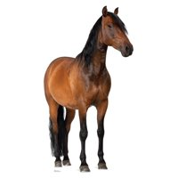 Horse Cardboard Stand-Up, 6ft