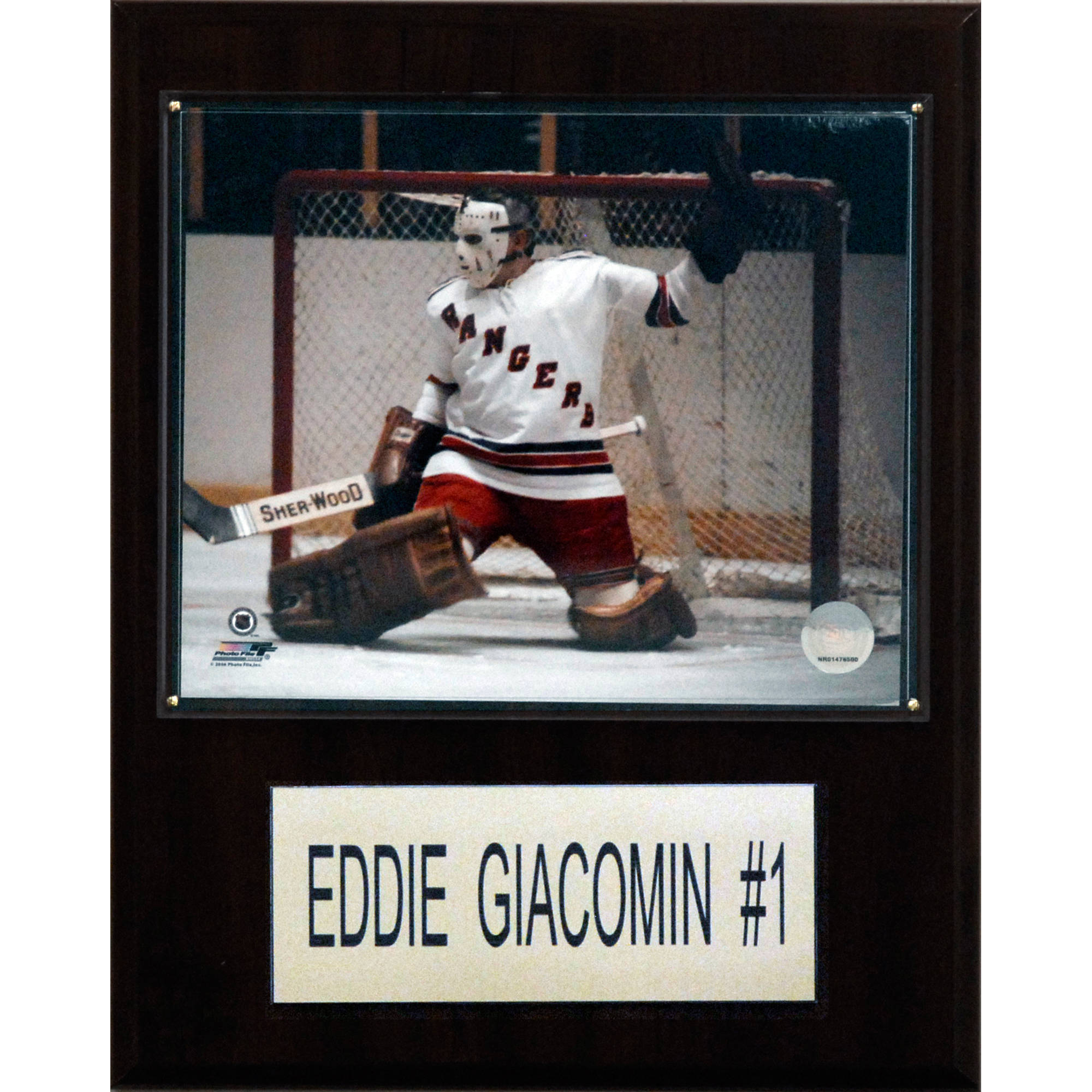 C&I Collectables NHL 12x15 Eddie Giacomin New York Rangers Player Plaque