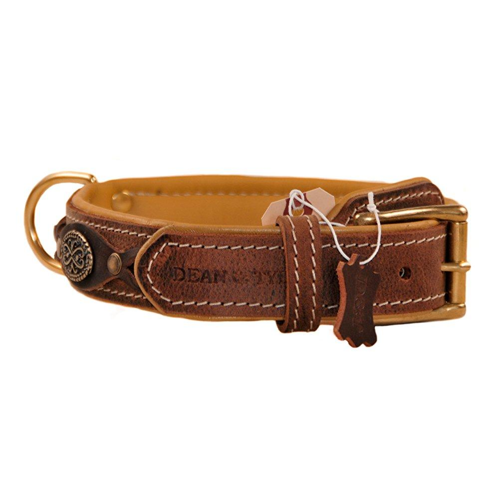 """dean and tyler """"dean's legend"""", leather dog collar with solid brass plates - brown - size 24-inch by 1-1/2-inch, fits neck 22-inch to 26-inch"""