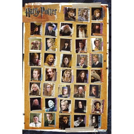 Harry Potter Image - and the Deathly Hallows - Characters Poster 24 x 36in By Harry Potter,USA
