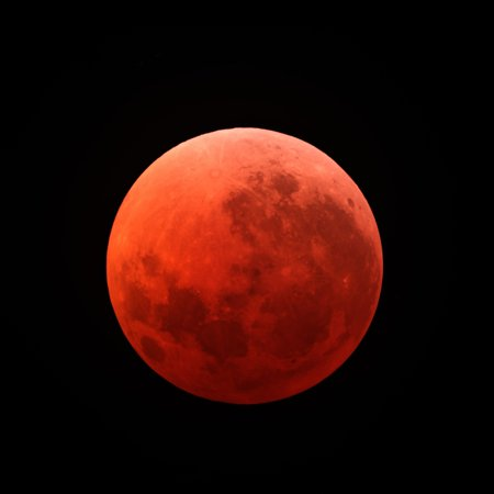 Lunar Eclipse Taken On April 15 2014 Canvas Art   Michael Millerstocktrek Images  29 X 29