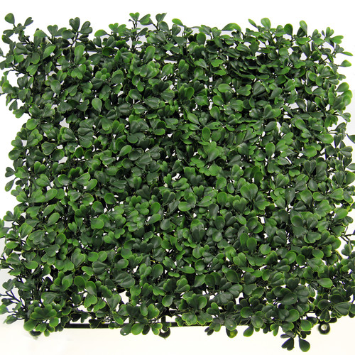 Century Outdoor Living Boxwood 19.7'' x 19.7'' Artificial Covering Hedge Fence (Set of 12)