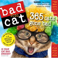 Bad Cat Page-A-Day Calendar 2020 (Other)