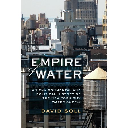 Empire of Water : An Environmental and Political History of the New York City Water Supply (City Supplies)