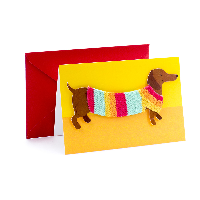 Hallmark Signature Birthday Greeting Card Dog In Sweater