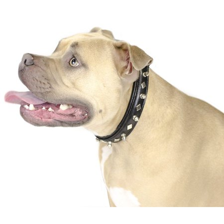 Leather Dog Spiked Dog Collar (Derby Dog Designer Series USA Leather Spikes and Diamond Padded Dog Collar - 8