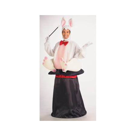 Bunny In A Hat Costume (COSTUME-MAGIC HAT RABBIT)