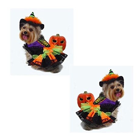 Dog Costume - HALLOWEEN WITCH COSTUMES - Dogs As Colorful Witches for $<!---->
