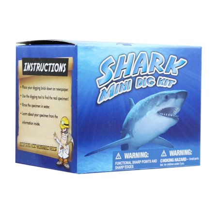 - Mini Shark Teeth Dig Science Kit