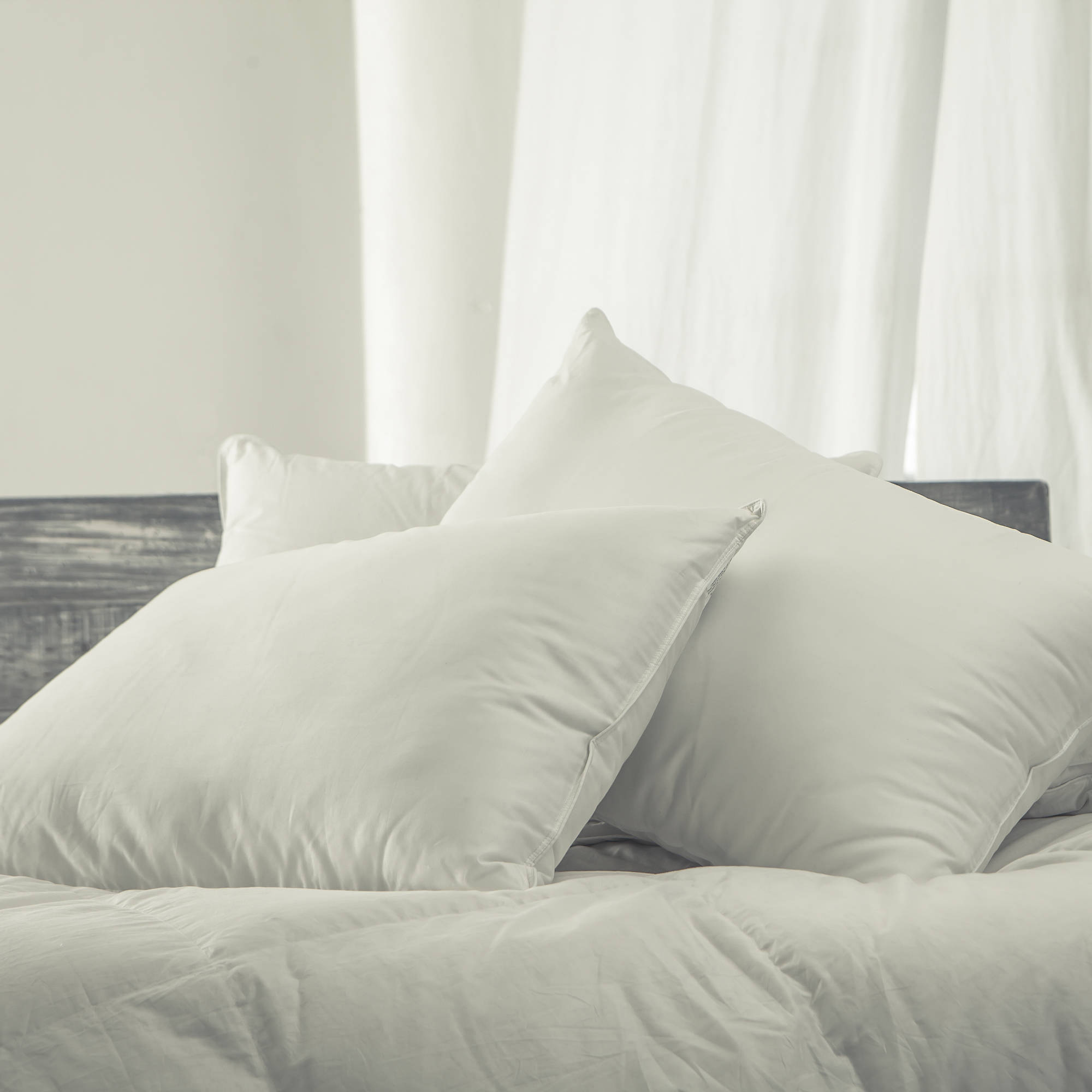 Cozy Classics Dacron Comforel Silky Firm Down Alternative Pillows, 2pk