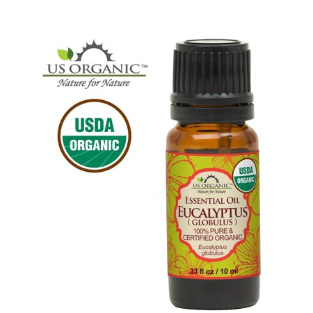 Eucalyptus Globulus Essential Oil (100% Pure Certified USDA Organic - Eucalyptus Essential Oil (Globulus) )
