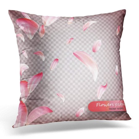 ARHOME Pink Sakura Falling Petals Wedding Valentine Women Day Floral Blossoms Flying in Wind Whirl on Vecto 10 Pillow Case Pillow Cover 20x20 inch