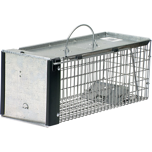 Havahart X-Small Professional Style 1-Door Animal Trap for Chipmunk, Squirrel, Rat and Weasel