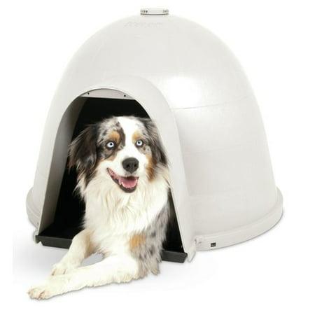 Excellent Petmate Igloo Dog House Medium 24X30X48 Download Free Architecture Designs Embacsunscenecom