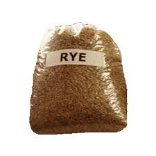Annual Ryegrass Seed - The Dirty Gardener Rye Grain Seeds - 5 Pounds