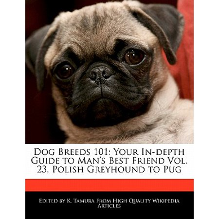 Dog Breeds 101 : Your In-Depth Guide to Man's Best Friend Vol. 23, Polish Greyhound to