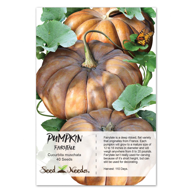 Packet of 40 Seeds, Fairytale Pumpkin (Cucurbita moschata) Non-GMO Seeds by Seed Needs