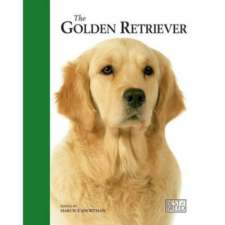 The Golden Retriever (The Golden Retriever)