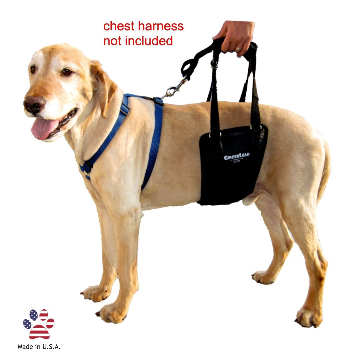 GingerLead Dog Support & Rehabilitation Harness - Medium ...