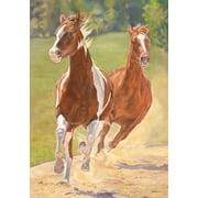 "Running Free Horse Garden Flag Spring Everyday Decorative Country Farm 12"" x 18"""
