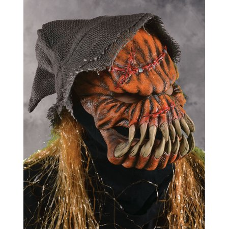 Zagone Gourd-Ee Pumpkin Scarecrow Full Head Mask, Orange, One Size](Homemade Pumpkin Halloween Mask)