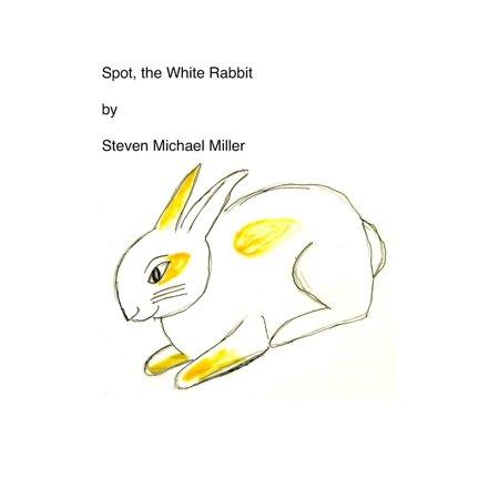Spotted Rabbit (Spot, the White Rabbit - eBook)