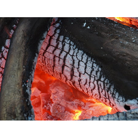 Canvas Print Flame Burning Hot Firewood Log Wood Burn Fire Stretched Canvas 10 x