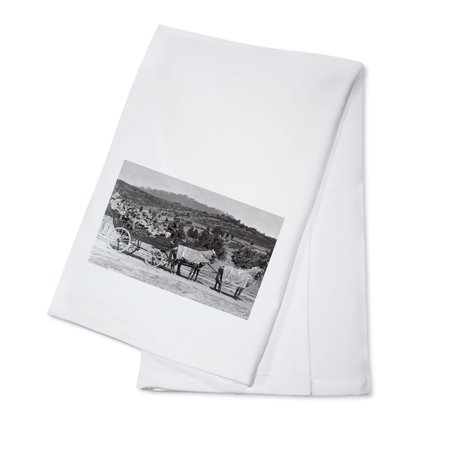 Jacksonville, Oregon - A Bandwagon View (100% Cotton Kitchen Towel)