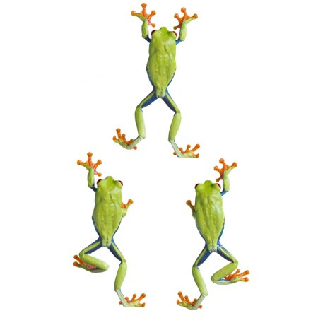 Three Red Eyed Tree Frogs Climbing Stretched Canvas - Corey Hochachka  Design Pics (11 x 17) Climbing Frog Design