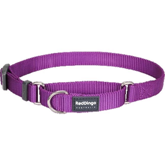 Red Dingo MC-ZZ-PU-ME Martingale Dog Collar Classic Purple, Medium
