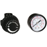 BOSTITCH 2-Piece Regulator & Gauge Kit | BTFP72326