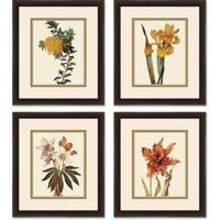 """Botanical Flower Set 14"""" x 16"""" Wall Art"""