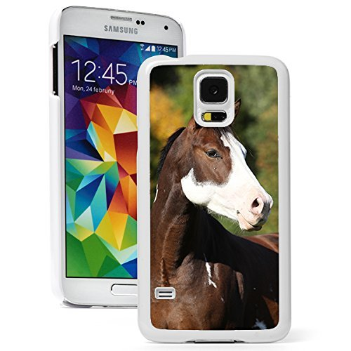 Samsung Galaxy (S5 Active) Hard Back Case Cover Paint Horse (White)