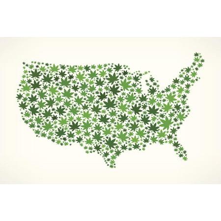 United States USA Map On Weed Art Print Poster X Walmartcom - Us map poster walmart