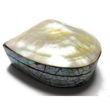 Seashell Keepsake Box Medium - Gold - Coastal Decor   - Seashell Box