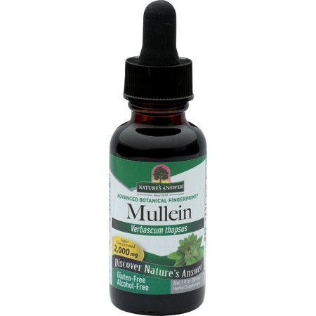 Natures Answer Butchers Broom (Nature's Answer Mullein Leaves Extract, 1 Fl)