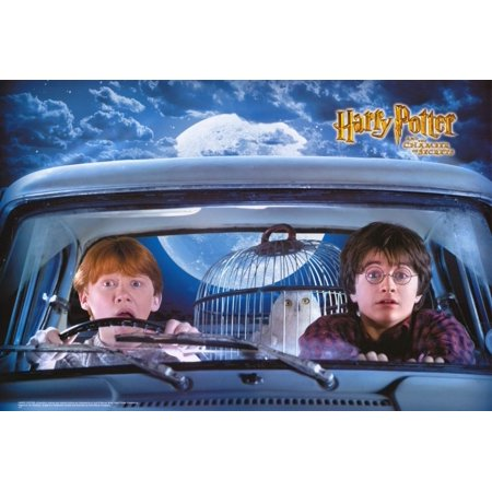 Harry Potter and the Chamber of Secrets (2002) 27x40 Movie Poster ()