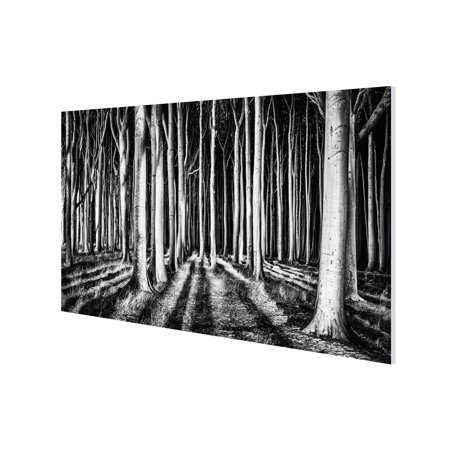 3 Panel Photo Big Canvas Wall Art Black And White Forest Print 39 X 59 Inches Ready To Hang Large Statement Mounted