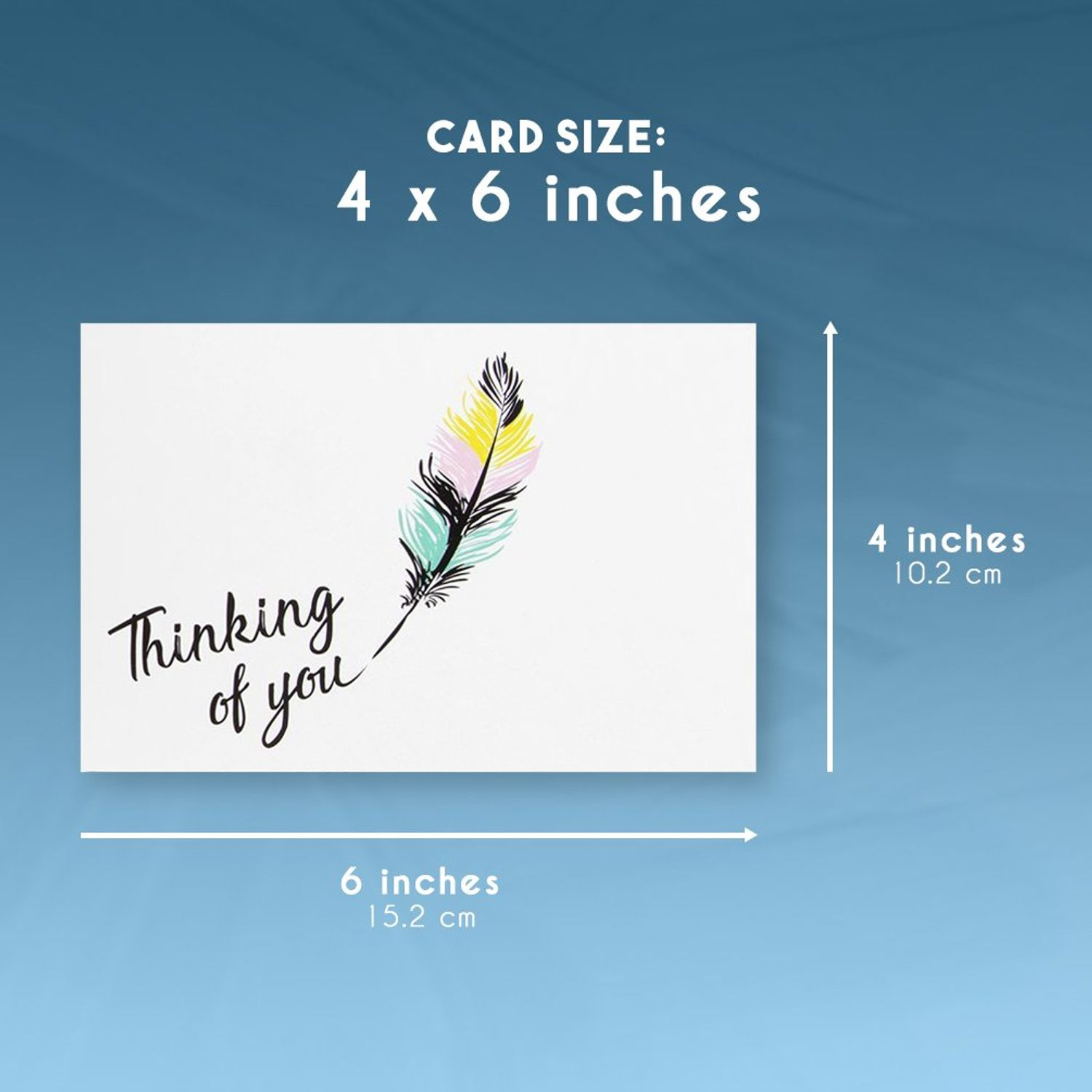 4 x 6 Inches Includes 48 Greeting Cards and Envelopes 48-Pack Thinking of You Note Cards Blank on the Inside Colorful Feather Design