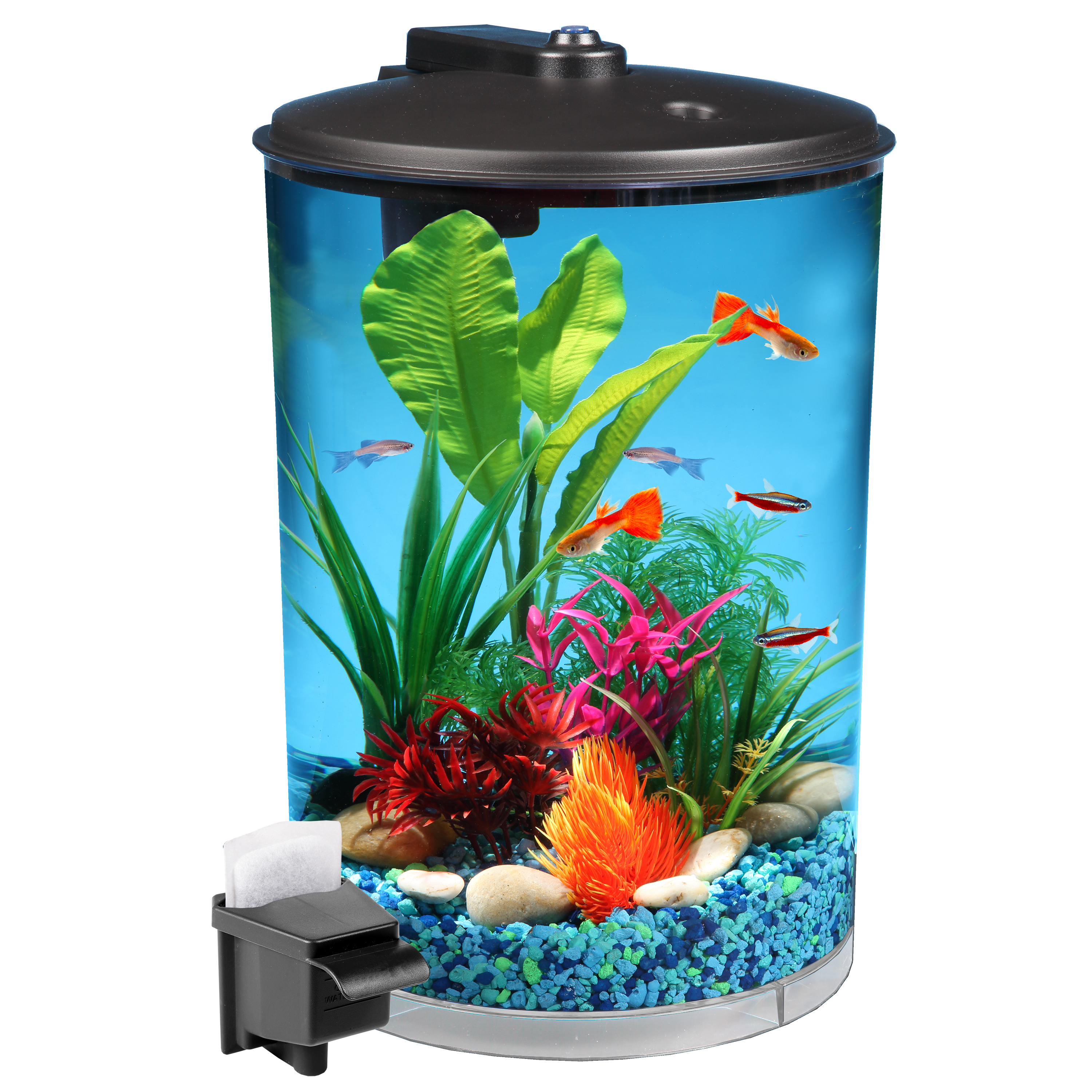 "Hawkeye 3-Gallon 360 View Aquarium Kit with LED Lighting and Filtration, 9.5"" L x 9.5"" W x 13.75"" H"