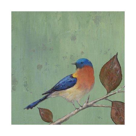 Resting Bird II Print Wall Art By Mehmet Altug (Resting Bird)