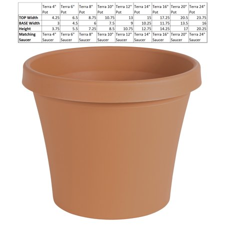 Large Terra Cotta Pot (Bloem Terra Pot Planter 20
