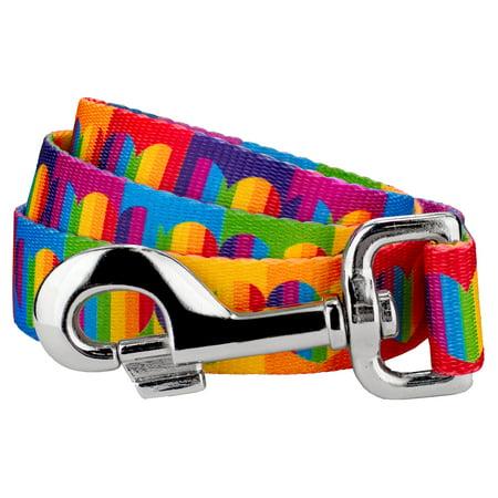 Heart Leash - Country Brook Petz | 1 Inch Rainbow Hearts Dog Leash - 2 Foot