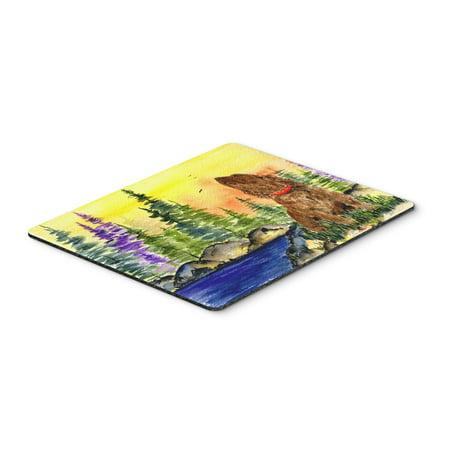 American Water Spaniel Mouse Pad / Hot Pad / Trivet