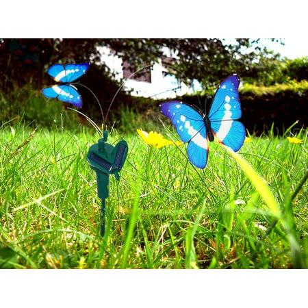 HQRP Twin Solar Powered Flying Fluttering Butterflies Morpho for Garden Plants Flowers Decoration plus HQRP UV Meter - image 3 de 5